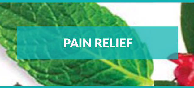 Pain Relief – Aloha Óleos Essenciais